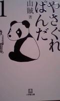 Panda2_090608