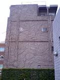 Wall_011409